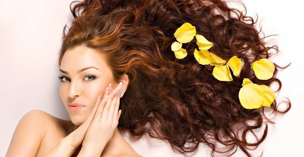 Radici grosse di rimedi di gente di capelli