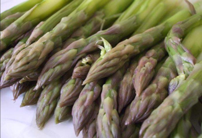 Asparagi: proprietà, benefici, usi e controindicazioni. Scopri le proprietà benefiche e curative degli asparagi per per depurare l'organismo e per dimagrire.