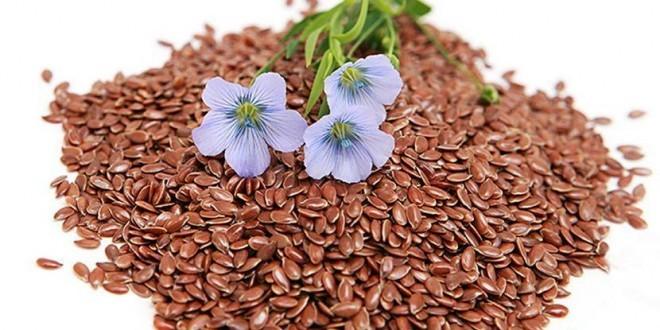 Semi di lino: proprietà, benefici per la salute, utilizzi tisana di semi di lino controindicazioni