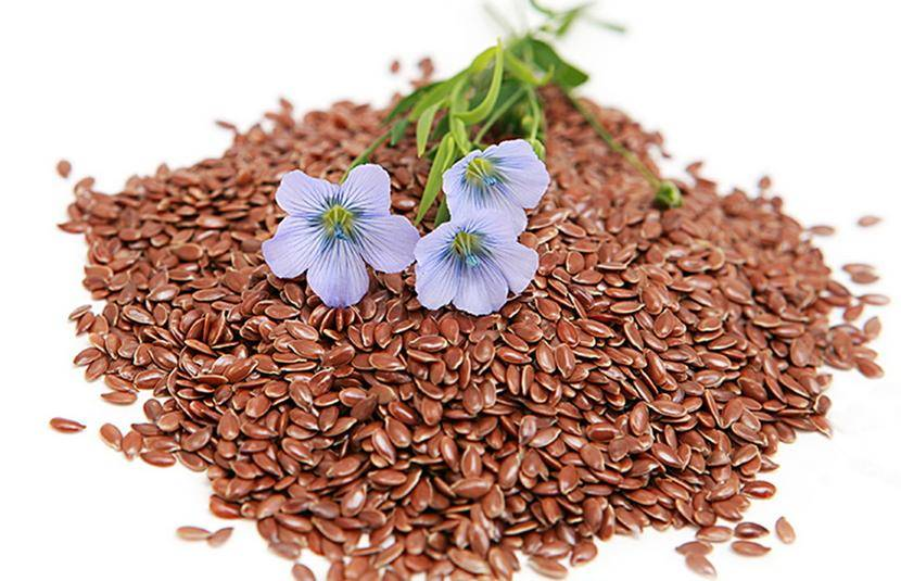 Piante Naturali Per Dimagrire : Semi di lino proprietà benefici rimedi utilizzo e