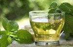 Tè verde: proprietà, benefici, usi e controindicazioni. Cosa dice la scienza e dove comprarlo
