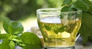 Tè verde: proprietà, benefici per la salute, preparazione, utilizzi e controindicazioni