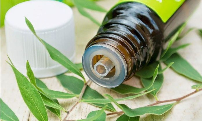 Tea Tree Oil: proprietà, benefici, utilizzi e controindicazioni
