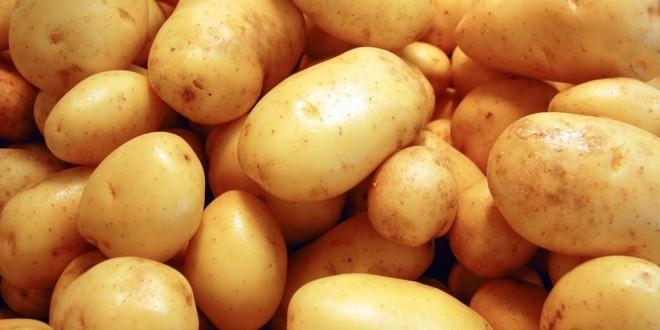 Come cucinare le patate ricette con patate facili e veloci for Ricette veloci da cucinare