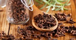 Chiodi di garofano - proprietà curative e terapeutiche, benefici per la salute e controindicazioni