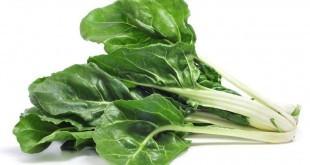 Bietola: proprietà, benefici, valori nutrizionali, calorie, utilizzi e controindicazioni
