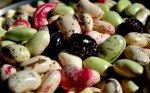 Fagioli: proprietà, benefici, valori nutrizionali, calorie, utilizzi e controindicazioni