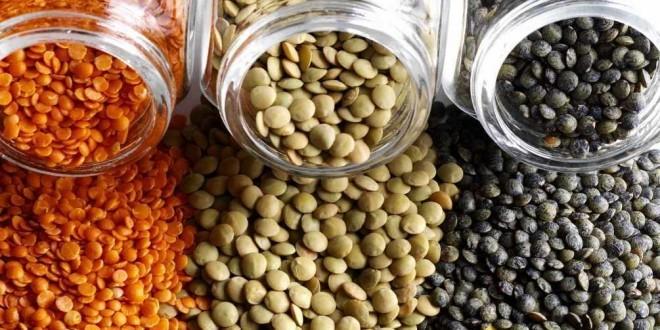 Lenticchie: proprietà, benefici, valori nutrizionali, calorie, utilizzi e controindicazioni