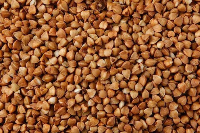 Grano saraceno: proprietà, benefici, valori nutrizionali, calorie, utilizzi e controindicazioni
