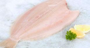 Come cucinare la sogliola - Ricette con la sogliola facili e veloci