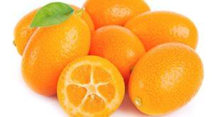 Kumquat mandarino cinese proprietà benefici uso e controindicazioni.