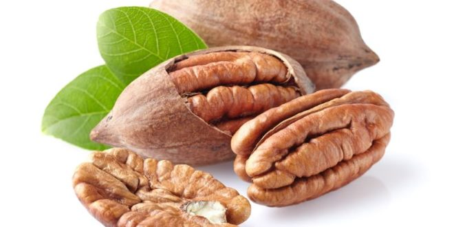Noci Pecan: proprietà, benefici, valori nutrizionali uso e controindicazioni