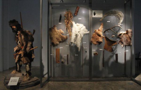 Cosa vedere assolutamente a Valencia Museo della Preistoria di Valencia