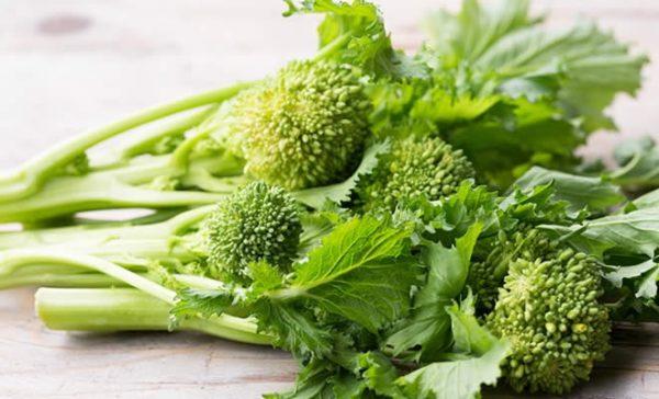 cime di rapa broccoli di rapa broccoletti friarielli beneficii e controindicazioni