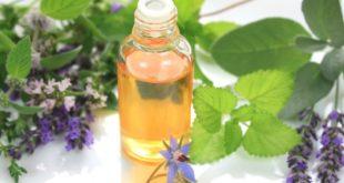 Olio di borragine, a cosa serve? Scopri le proprietà dell'olio di borragine, a cosa serve, i benefici per la salute, gli usi alimentari o cosmetici, le controindicazioni e gli effetti collaterali.