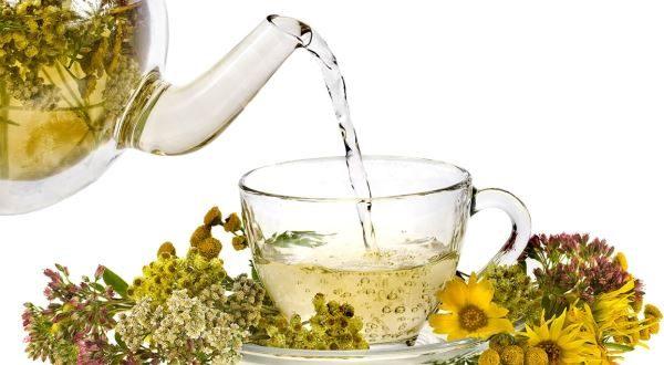 Tisana detox fai da te. Elenco erbe depurative con le quali potete preparare la migliore tisana detox per depurare l'organismo, il fegato ed i reni.