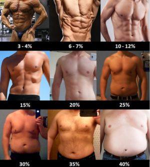 Come stimare la percentuale di massa grassa da un esame visuale nell'uomo