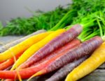Come coltivare le carote : dall'orto alla cucina