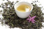 Cos'è il tè bianco : proprietà , valori nutrizionali e controindicazioni