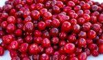 Cos'è il cranberry o mirtillo rosso americano e le sue proprietà benefiche ( antibatteriche in particolare )